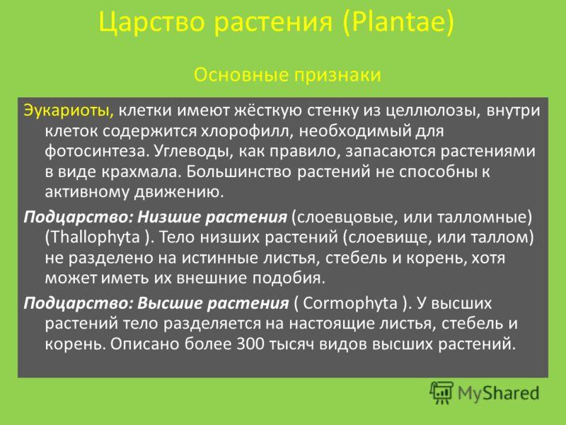 Царство растения plantae эукариоты