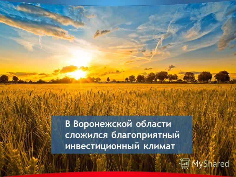 В Воронежской области сложился благоприятный инвестиционный климат