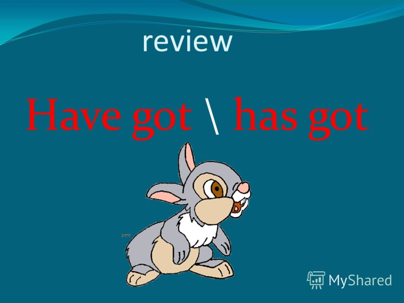 review Have got \ has got