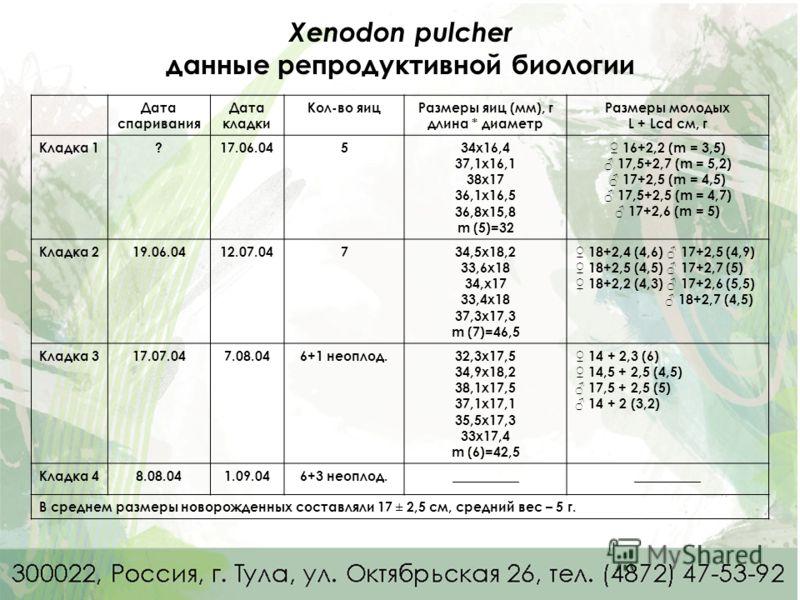Xenodon pulcher данные репродуктивной биологии Дата спаривания Дата кладки Кол-во яицРазмеры яиц (мм), г длина * диаметр Размеры молодых L + Lcd см, г Кладка 1?17.06.04534x16,4 37,1x16,1 38x17 36,1x16,5 36,8x15,8 m (5)=32 16+2,2 (m = 3,5) 17,5+2,7 (m