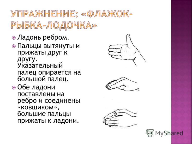 Ладонь ребром. Пальцы вытянуты и прижаты друг к другу. Указательный палец опирается на большой палец. Обе ладони поставлены на ребро и соединены «ковшиком», большие пальцы прижаты к ладони.
