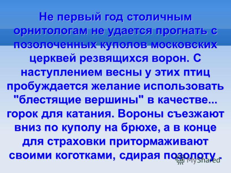 Не первый год столичным орнитологам не удается прогнать с позолоченных куполов московских церквей резвящихся ворон. С наступлением весны у этих птиц пробуждается желание использовать