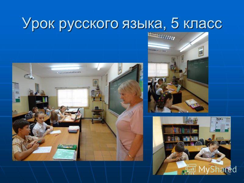 Урок русского языка, 5 класс