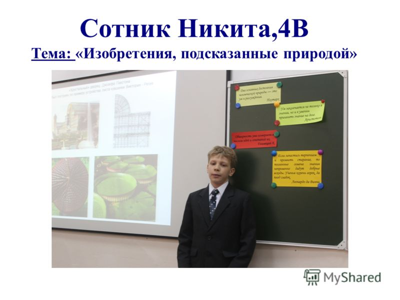 Сотник Никита,4В Тема: «Изобретения, подсказанные природой»