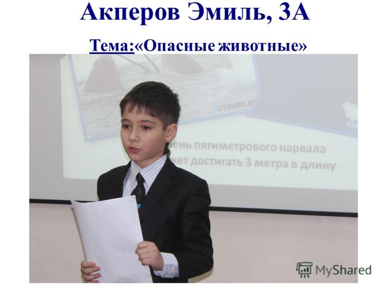 Акперов Эмиль, 3А Тема:«Опасные животные»
