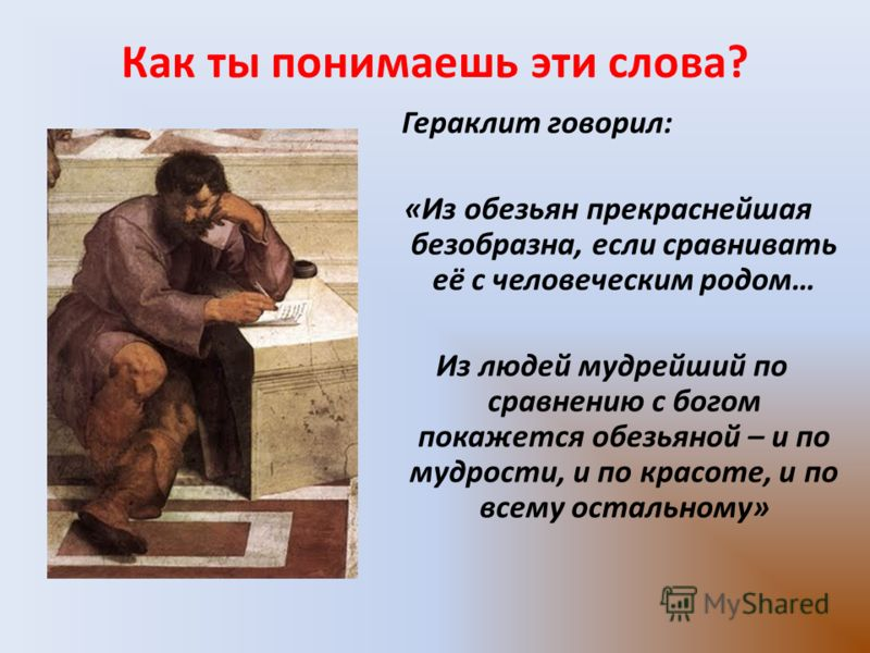 Как ты понимаешь эти слова? Гераклит говорил: «Из обезьян прекраснейшая безобразна, если сравнивать её с человеческим родом… Из людей мудрейший по сравнению с богом покажется обезьяной – и по мудрости, и по красоте, и по всему остальному»