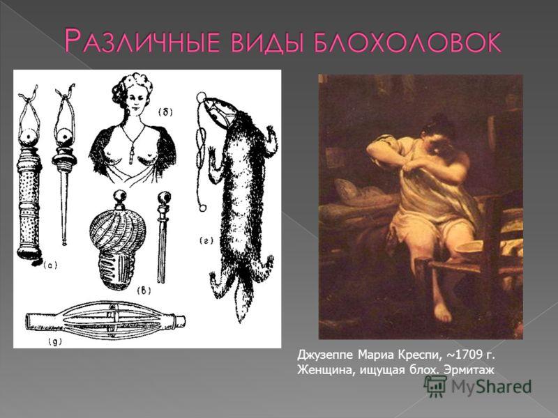Джузеппе Мариа Креспи, ~1709 г. Женщина, ищущая блох. Эрмитаж