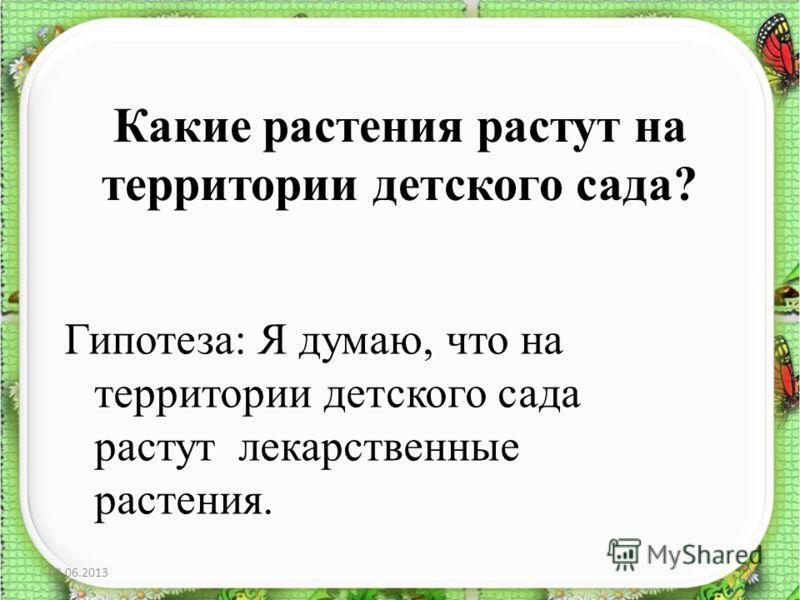 Какие растения растут на территории детского сада? Гипотеза: Я думаю, что на территории детского сада растут лекарственные растения. 03.06.20132