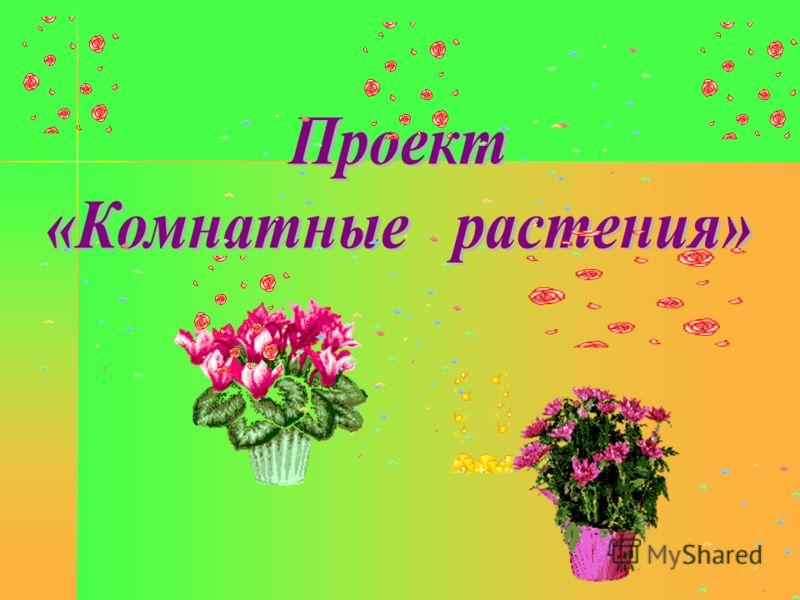 познакомить детей с цветами
