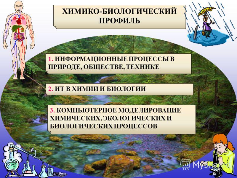 ХИМИКО-БИОЛОГИЧЕСКИЙ ПРОФИЛЬ 1. ИНФОРМАЦИОННЫЕ ПРОЦЕССЫ В ПРИРОДЕ, ОБЩЕСТВЕ, ТЕХНИКЕ 2. ИТ В ХИМИИ И БИОЛОГИИ 3. КОМПЬЮТЕРНОЕ МОДЕЛИРОВАНИЕ ХИМИЧЕСКИХ, ЭКОЛОГИЧЕСКИХ И БИОЛОГИЧЕСКИХ ПРОЦЕССОВ
