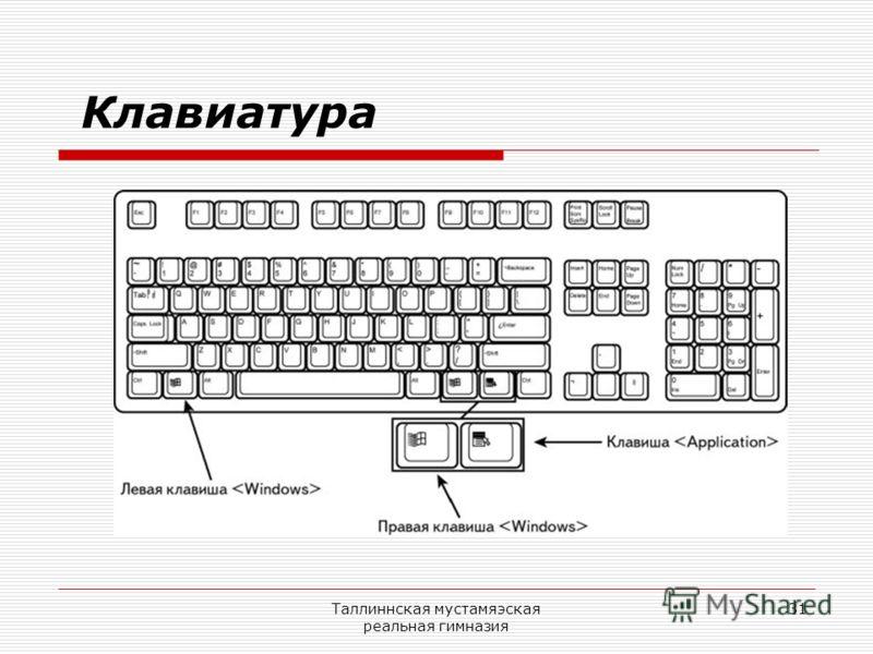 Таллиннская мустамяэская реальная гимназия 31 Клавиатура