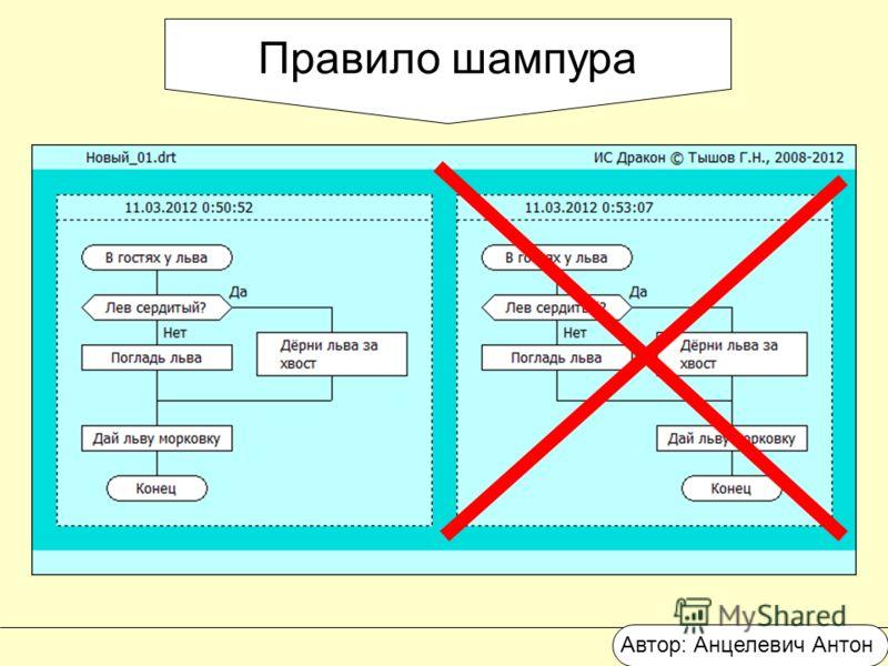 Правило шампура Автор: Анцелевич Антон