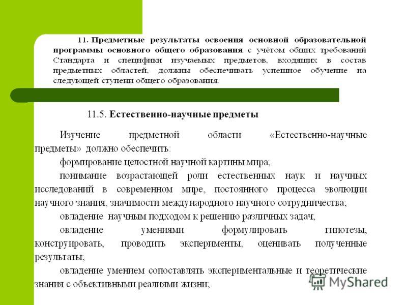 11.5. Естественно-научные предметы