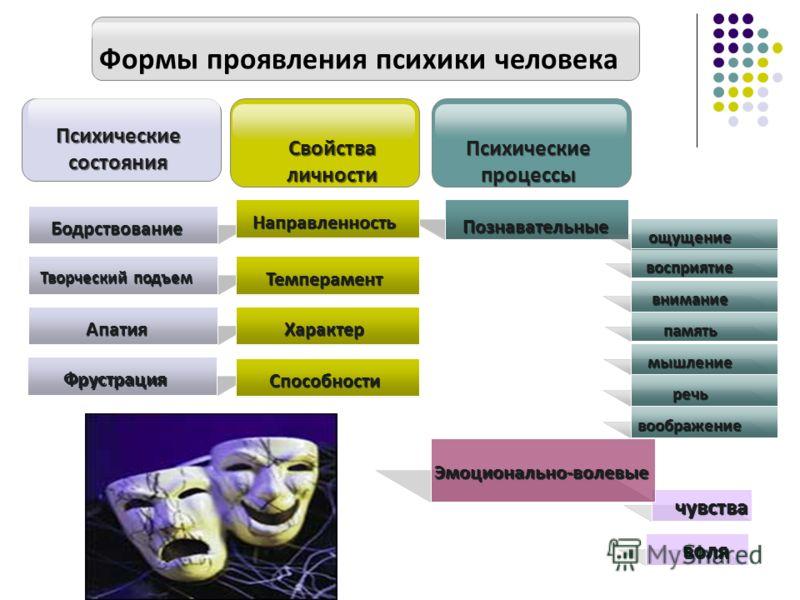 воображение и внимание в психологии: