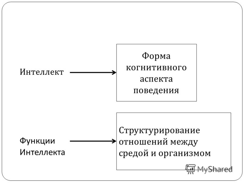 Интеллект Форма когнитивного аспекта поведения Функции Интеллекта Структурирование отношений между средой и организмом