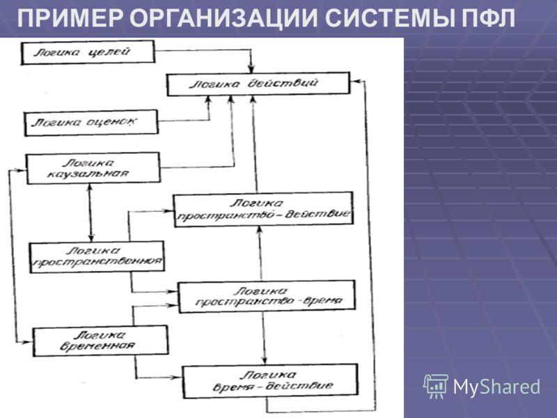ПРИМЕР ОРГАНИЗАЦИИ СИСТЕМЫ ПФЛ