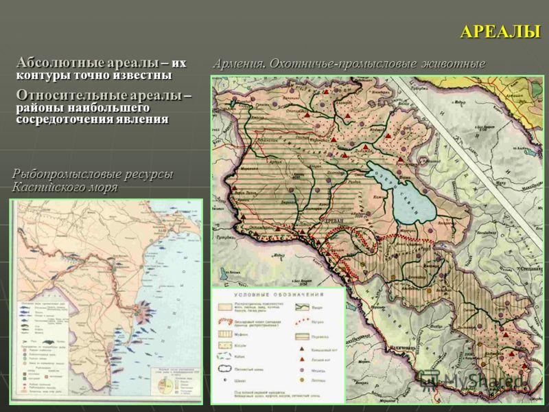 АРЕАЛЫ Армения. Охотничье-промысловые животные Рыбопромысловые ресурсы Каспийского моря Абсолютные ареалы – их контуры точно известны Относительные ареалы – районы наибольшего сосредоточения явления