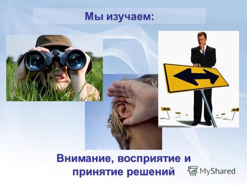 Внимание, восприятие и принятие решений Мы изучаем: