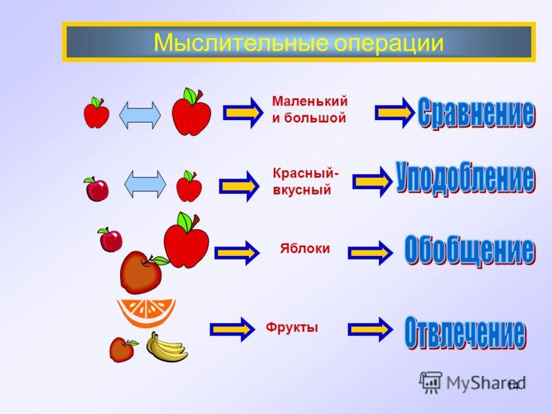 Мыслительные операции Маленький и большой Красный- вкусный Фрукты Яблоки 14
