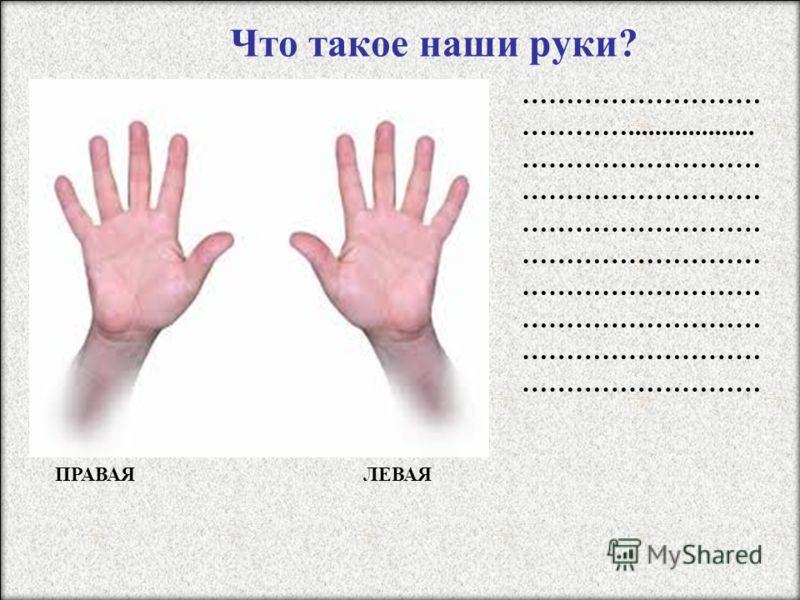 Что такое наши руки? ……………………… …………................... ……………………… ……………………… ……………………… ……………………… ЛЕВАЯ ПРАВАЯ