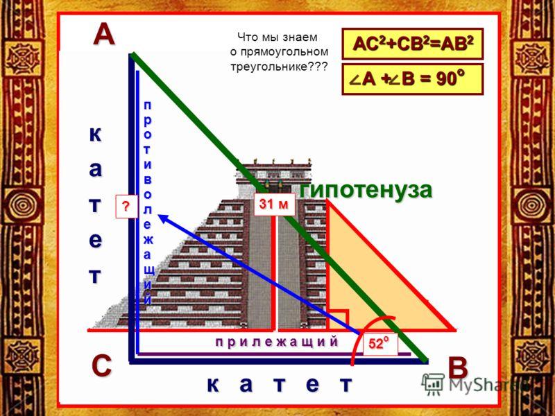 ЦЦ к а т е т катет гипотенузаАВ С п р и л е ж а щ и й противолежащий АС 2 +СВ 2 =АВ 2 А + В = 90 о 31 м 52 о ? Что мы знаем о прямоугольном треугольнике???