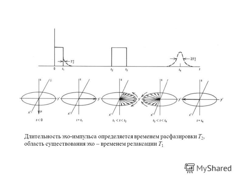Длительность эхо-импульса определяется временем расфазировки T 2, область существования эхо – временем релаксации T 1