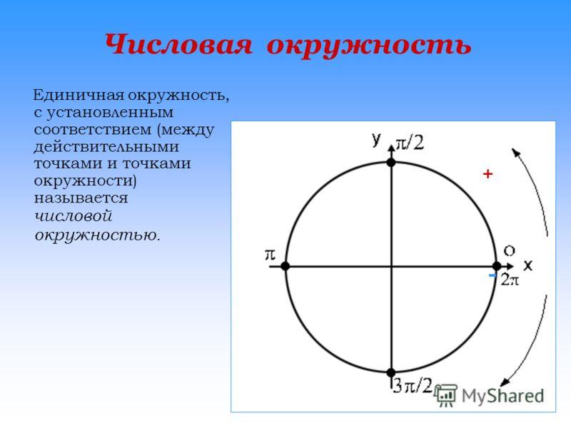 Числовая окружность Единичная окружность, с установленным соответствием (между действительными точками и точками окружности) называется числовой окружностью. + -