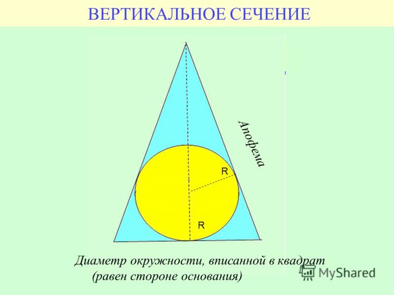 ВЕРТИКАЛЬНОЕ СЕЧЕНИЕ Диаметр окружности, вписанной в квадрат (равен стороне основания) R R Апофема