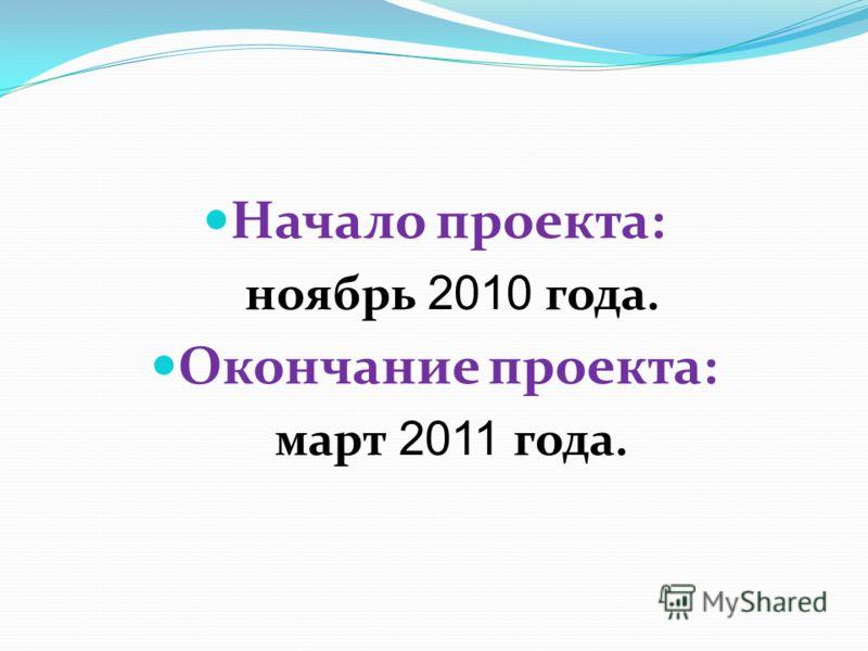 Начало проекта: ноябрь 2010 года. Окончание проекта: март 2011 года.