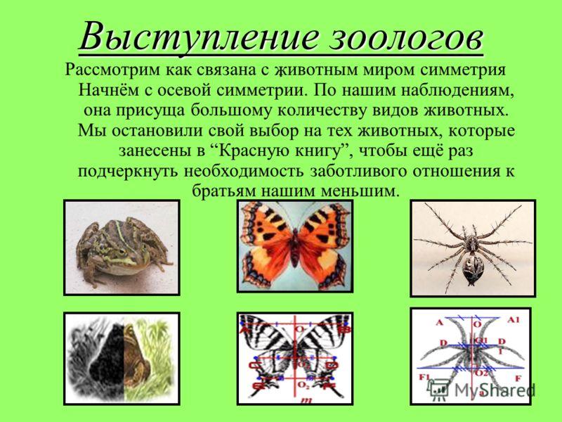 Рассмотрим как связана с животным миром симметрия Начнём с осевой симметрии. По нашим наблюдениям, она присуща большому количеству видов животных. Мы остановили свой выбор на тех животных, которые занесены в Красную книгу, чтобы ещё раз подчеркнуть н