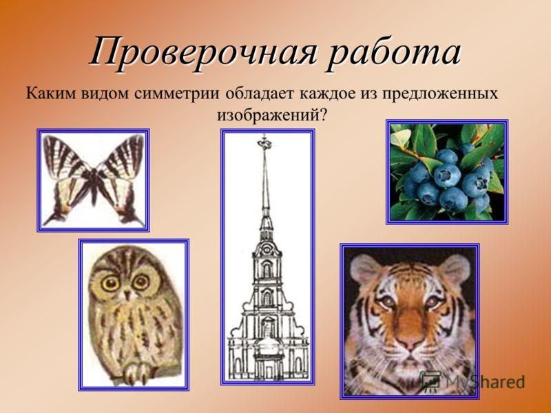 Проверочная работа Каким видом симметрии обладает каждое из предложенных изображений?