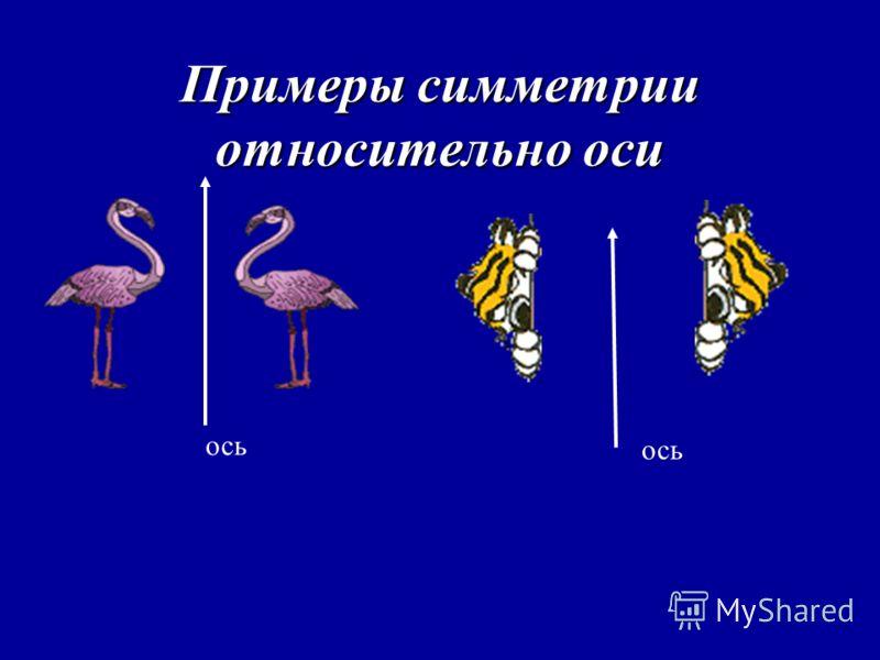 Примеры симметрии относительно оси ось