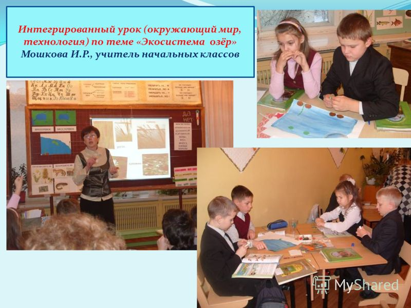 Интегрированный урок (окружающий мир, технология) по теме «Экосистема озёр» Мошкова И.Р., учитель начальных классов