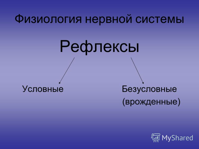 Физиология нервной системы Рефлексы Условные Безусловные (врожденные)