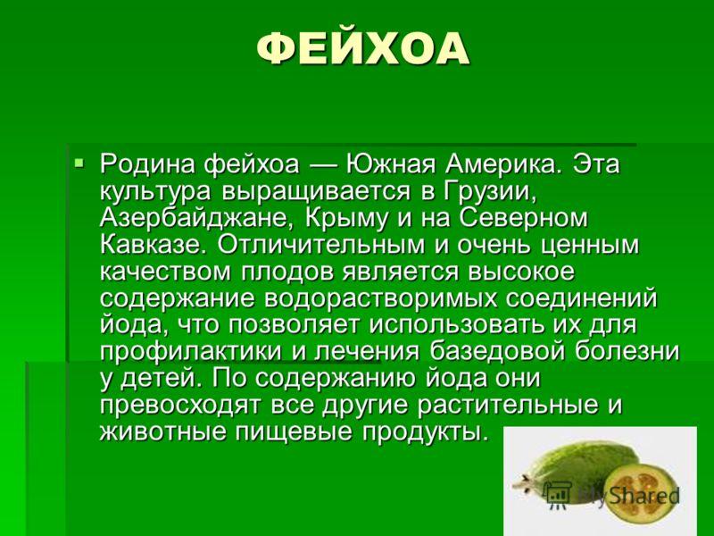 ФЕЙХОА Родина фейхоа Южная Америка. Эта культура выращивается в Грузии, Азербайджане, Крыму и на Северном Кавказе. Отличительным и очень ценным качеством плодов является высокое содержание водорастворимых соединений йода, что позволяет использовать и