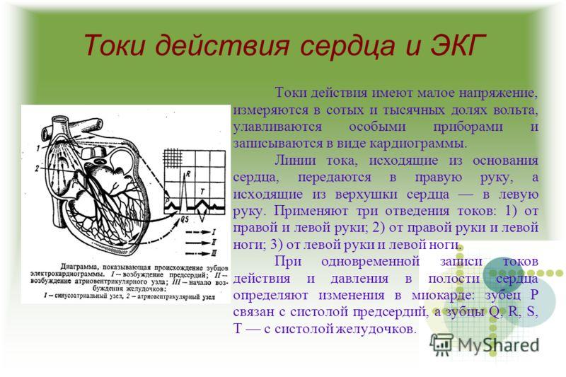 Токи действия сердца и ЭКГ Токи действия имеют малое напряжение, измеряются в сотых и тысячных долях вольта, улавливаются особыми приборами и записываются в виде кардиограммы. Линии тока, исходящие из основания сердца, передаются в правую руку, а исх