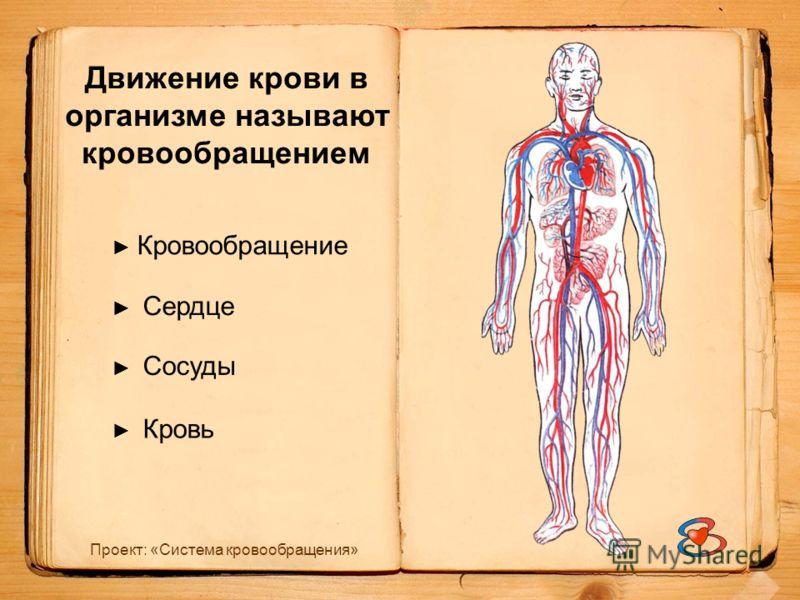 Проект: «Система кровообращения» Движение крови в организме называют кровообращением Кровообращение Сердце Кровь Сосуды