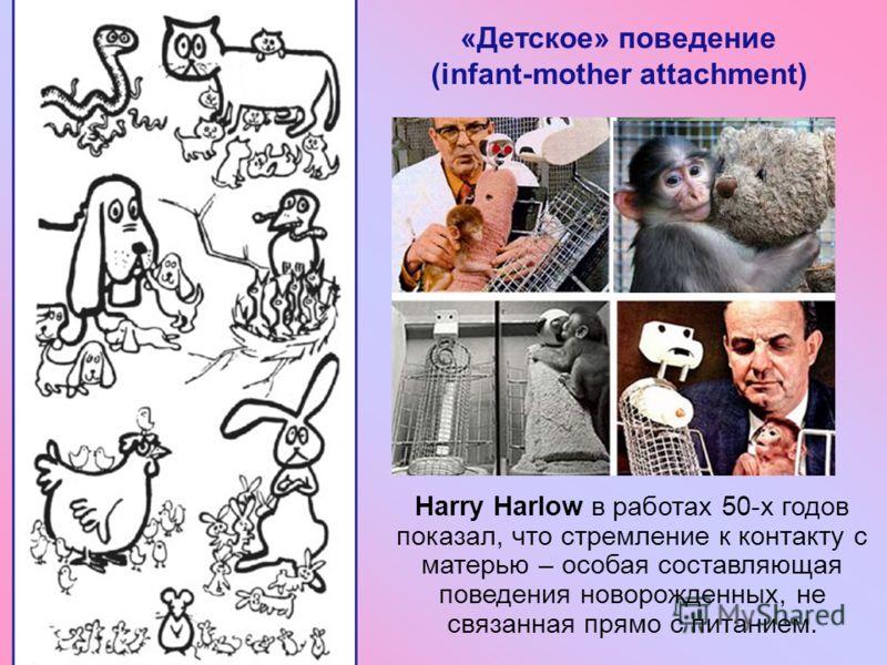 28 Harry Harlow в работах 50-х годов показал, что стремление к контакту с матерью – особая составляющая поведения новорожденных, не связанная прямо с питанием. «Детское» поведение (infant-mother attachment)