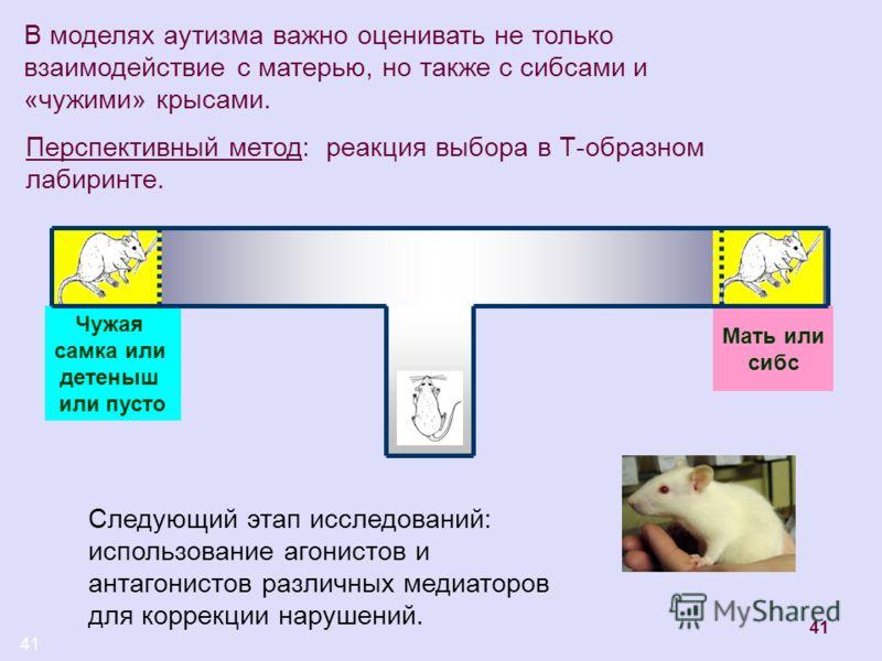41 В моделях аутизма важно оценивать не только взаимодействие с матерью, но также с сибсами и «чужими» крысами. Перспективный метод: реакция выбора в Т-образном лабиринте. Чужая самка или детеныш или пусто Мать или сибс Следующий этап исследований: и