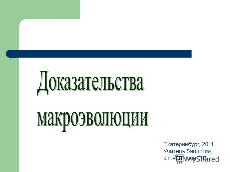 Екатеринбург, 2011 Учитель биологии, к.п.н. Дядюн Т.В.