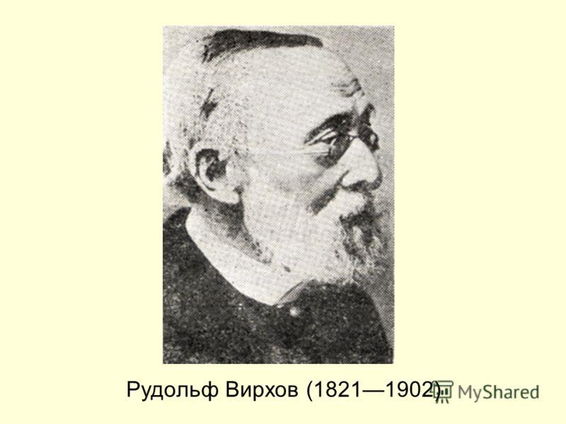 Рудольф Вирхов (18211902)
