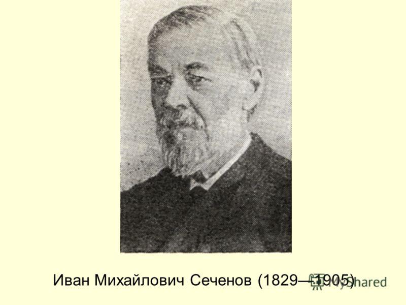 Иван Михайлович Сеченов (18291905)