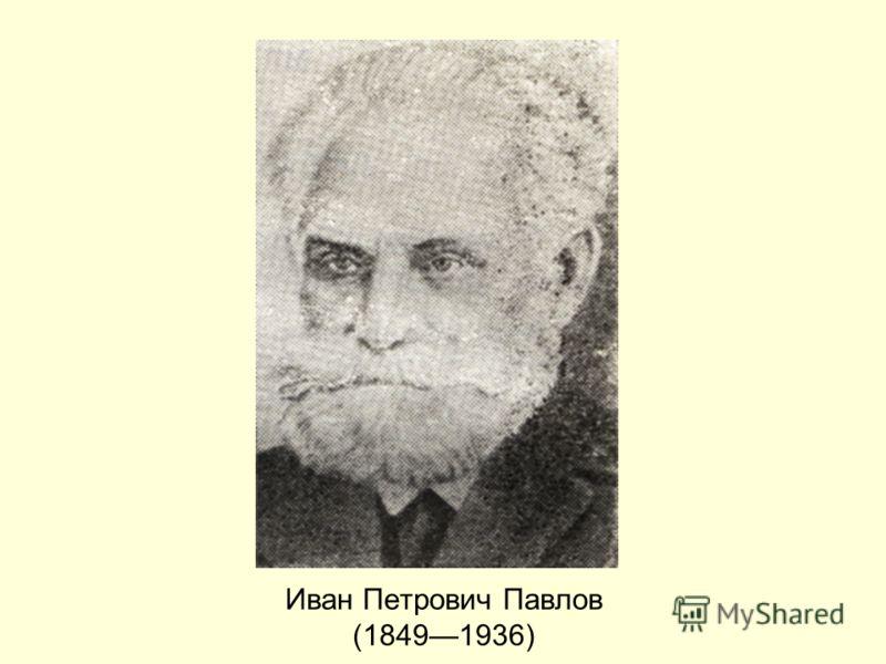 Иван Петрович Павлов (18491936)