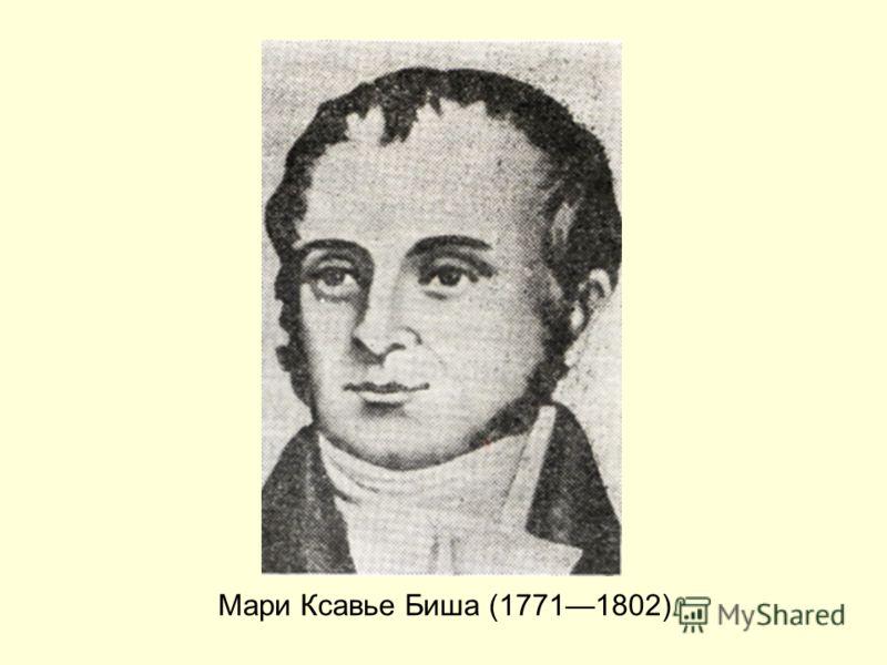 Мари Ксавье Биша (17711802)
