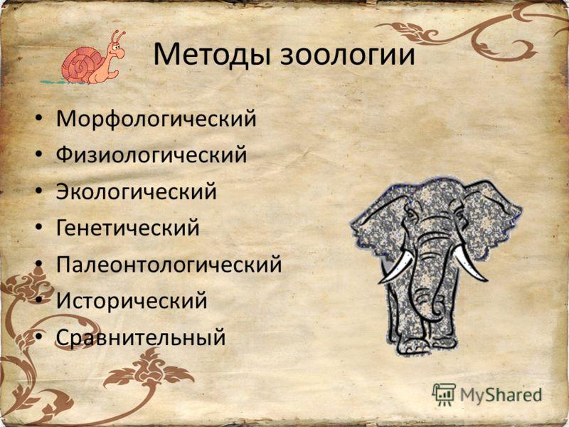 Методы зоологии Морфологический Физиологический Экологический Генетический Палеонтологический Исторический Сравнительный