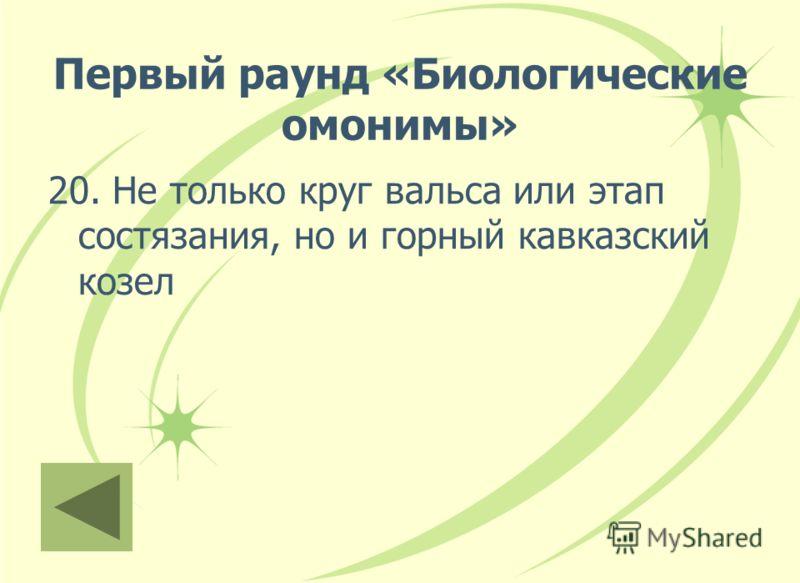 Первый раунд «Биологические омонимы» 20. Не только круг вальса или этап состязания, но и горный кавказский козел
