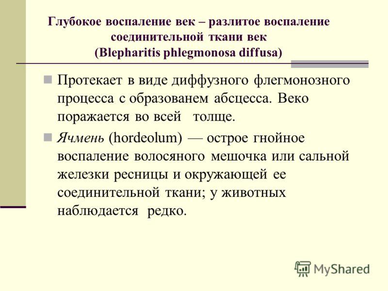 Глубокое воспаление век – разлитое воспаление соединительной ткани век (Blepharitis phlegmonosa diffusa) Протекает в виде диффузного флегмонозного процесса с образованем абсцесса. Веко поражается во всей толще. Ячмень (hordeolum) острое гнойное воспа