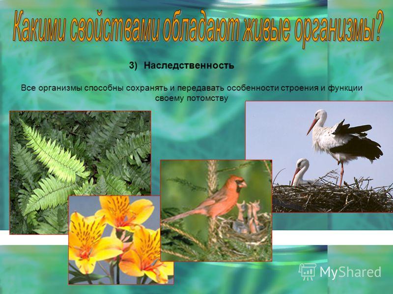 3)Наследственность Все организмы способны сохранять и передавать особенности строения и функции своему потомству