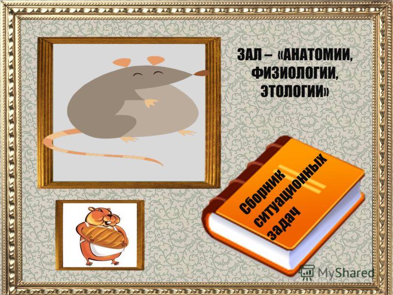 Сборник ситуационных задач ЗАЛ – «АНАТОМИИ, ФИЗИОЛОГИИ, ЭТОЛОГИИ»