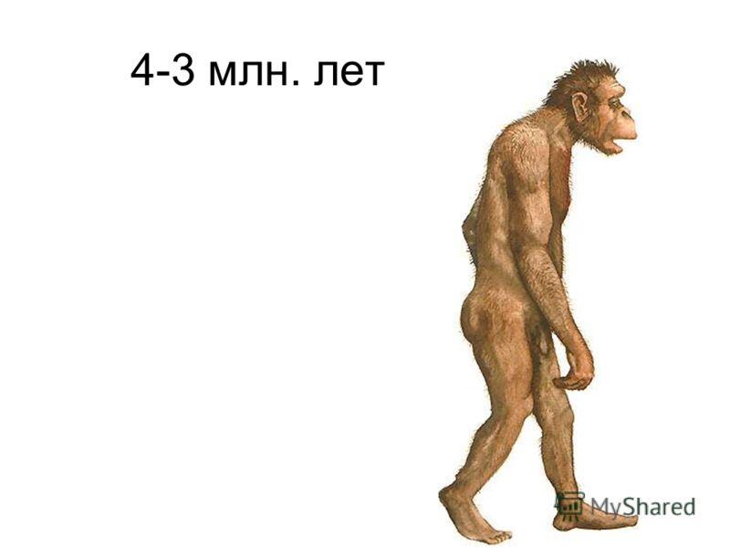 4-3 млн. лет